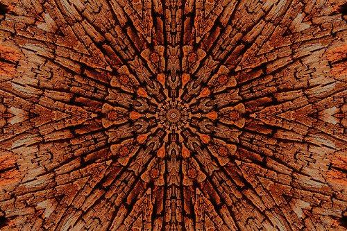 Mandala dřeva (4) (více variant)