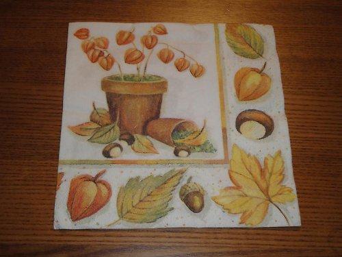 Ubrousek na decoupage - plody podzimu