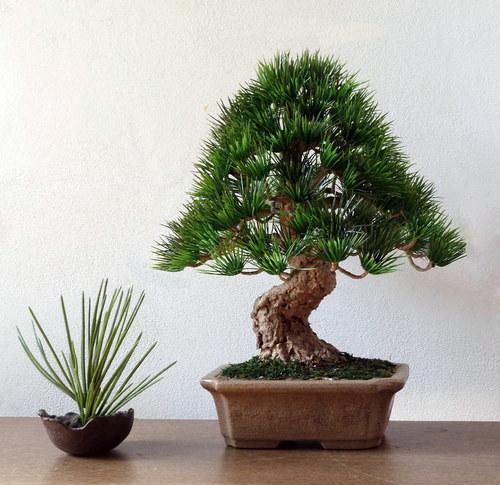 Napodobenina bonsaje - určená pro interier