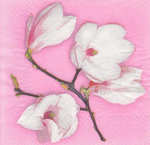 Ubrousek - magnolie