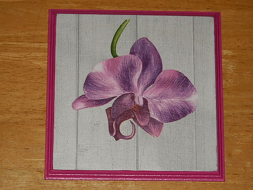 Obrázek na MDF destičce Orchidej V