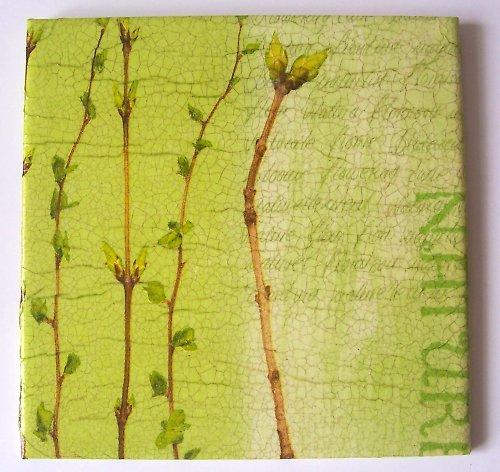 Zelené větvičkoví