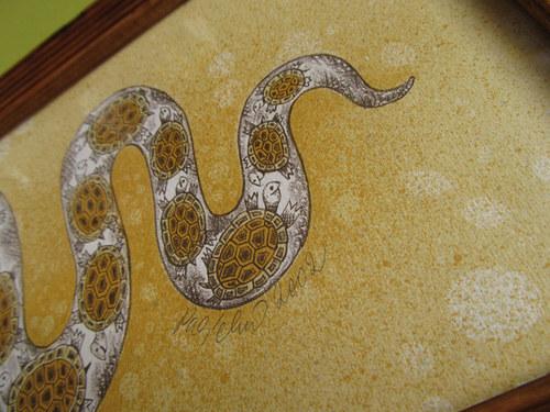 had...co spolykal 17 želviček