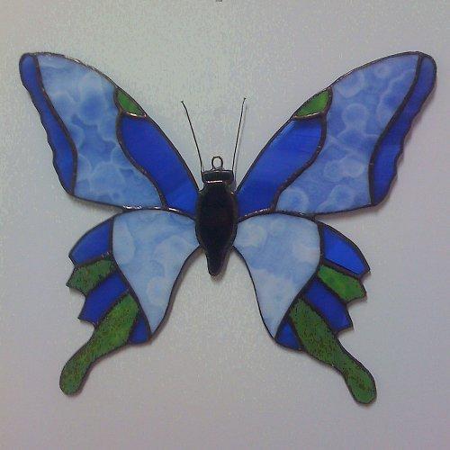 Motýl 5