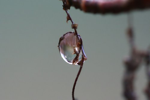Kouzelný střípek z přírody