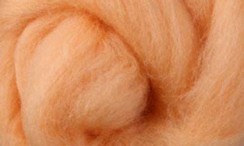 Česanec Corriedale Apricot 20 g