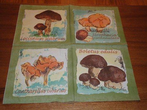 Ubrousek na decoupage - houby