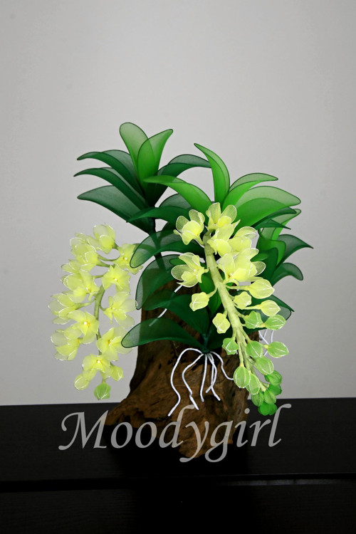 Květinová dekorace - ORCHIDEJ NA PAŘEZU