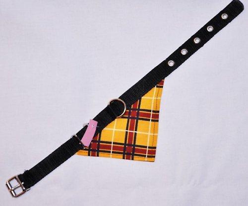 Obojek šíře 1,5cm délky 40cm s šátkem