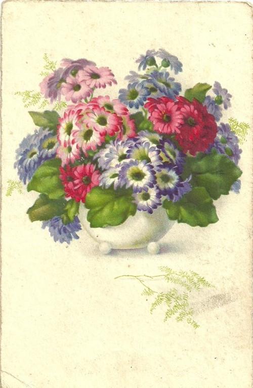 Umělecká pohlednice s vyobrazenými květy