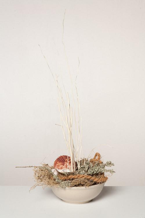 Mořská sušinová aranže