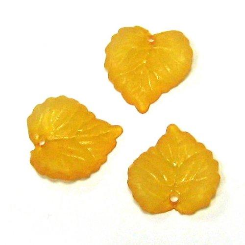 Lístek oranžový