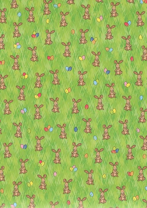 Fotokarton A4 králíci
