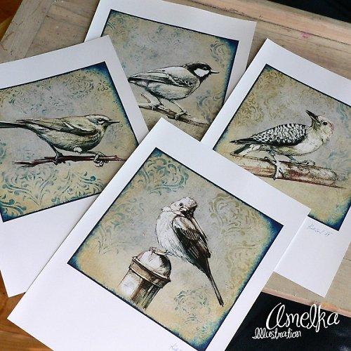 Ptačí kolekce - komplet 4 ks