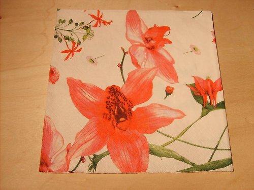 Ubrousek - orchidea