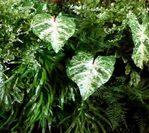 Vertical garden - zelený květinový obraz  150x50cm