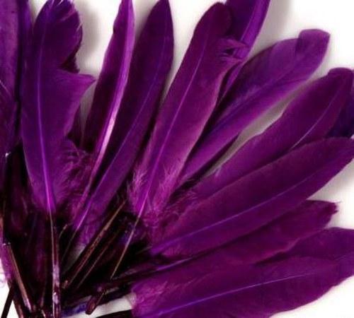 Tm.fialové kachní peří, 10ks