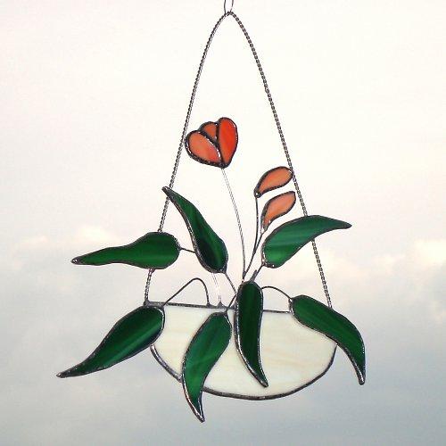 Kytička v květináči