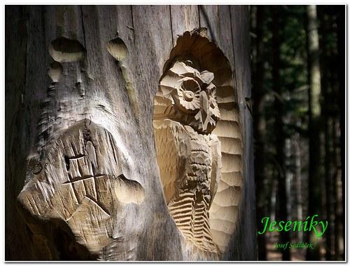 Tak to vypadá když se někdo mazlí se dřevem