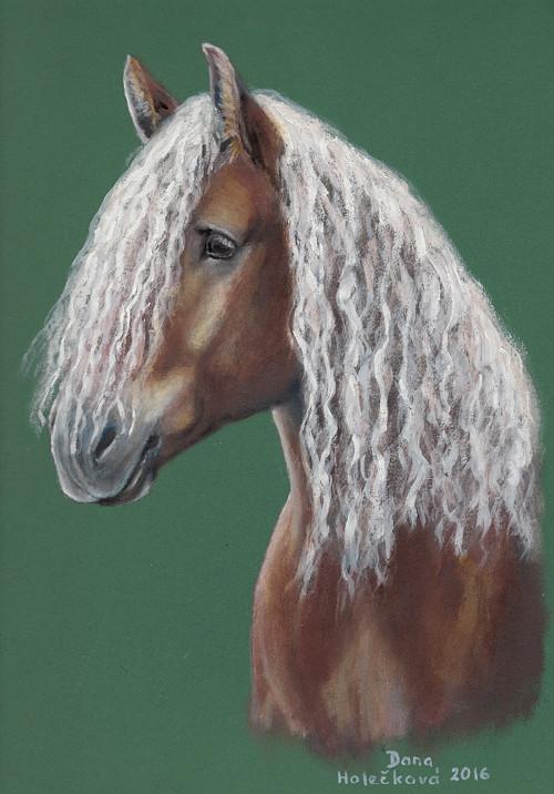 Kůň s bílou hřívou - autorský arch