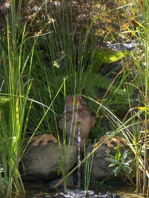 Česílko na zahradu