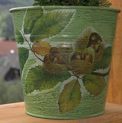Kaštánkový zelený
