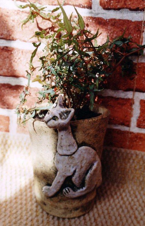 Kočkokvětináč