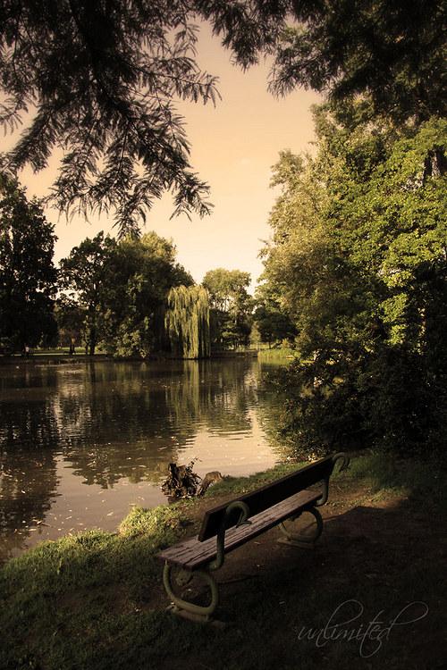 """Fotografie \""""Ticho v parku\"""""""