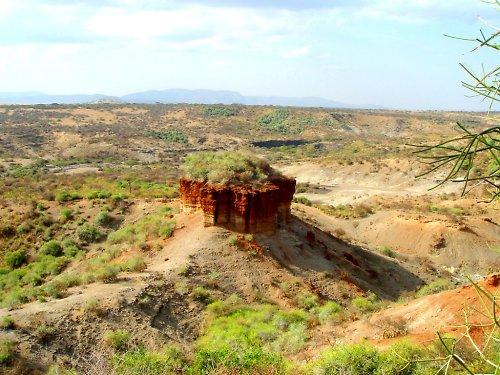 Olduvajská rokle  - Kolébka lidstva