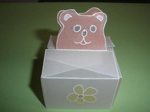 Medvědí krabička
