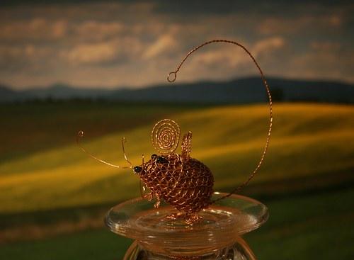 Myšička ze Středohoří :)