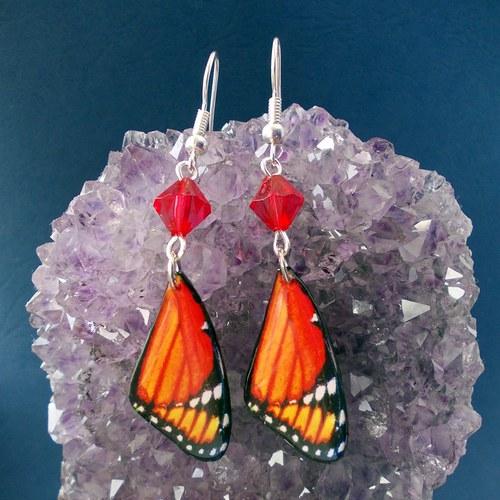 Náušnice motýl - mot50