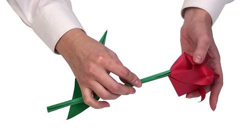 Kolekce nejznámějších skládaček origami na DVD.