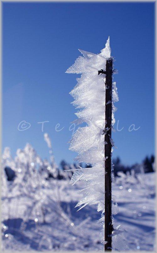 Čarovná paní zima
