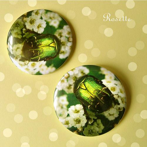Lesní smaragd ... - magnet / placka