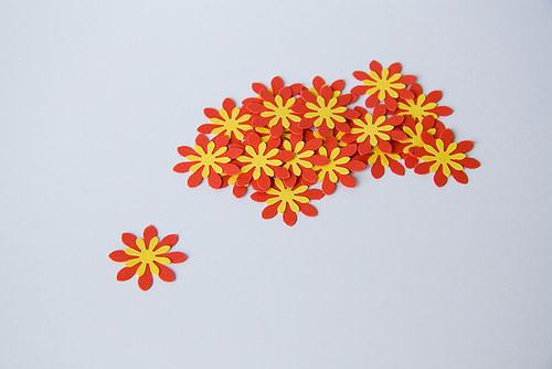 Kytka - červeno-žlutá