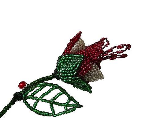 Z růže květ, červený ibišek