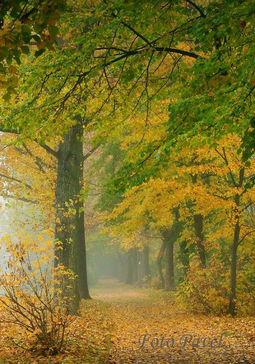Melancholický podzim - Mělník - Podolí