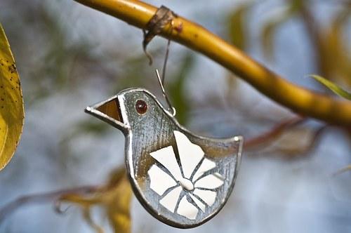 ptáčci (Vysočina - regionální produkt©) šupinka