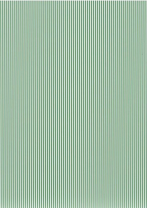 Fotokarton A4 pruhy tmavě zelený