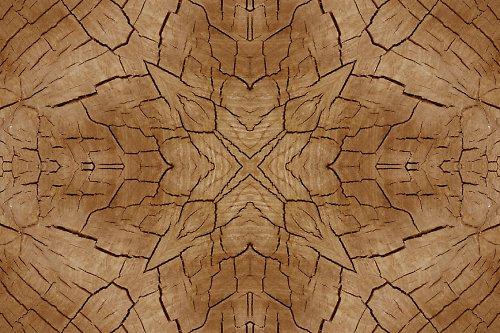 Mandala dřeva (5) (více variant)