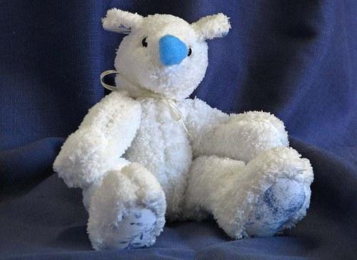 Medvídek bílý