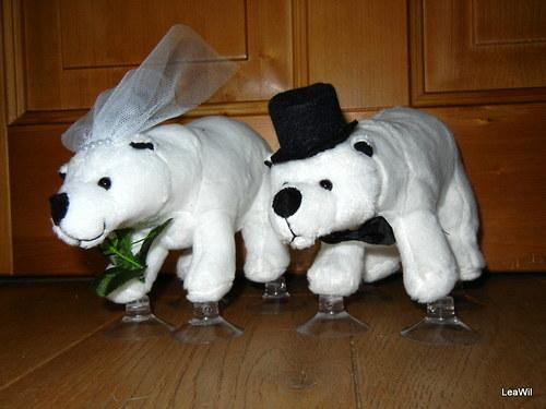 Svatební medvědi lední
