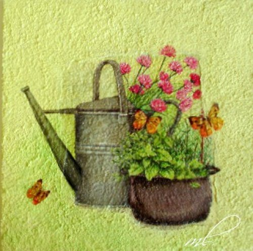 Zátiší - zahrada
