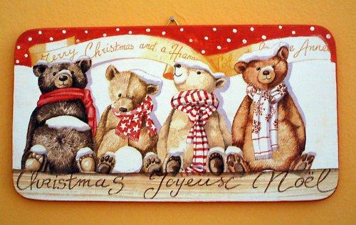 Medvědí kamarádi