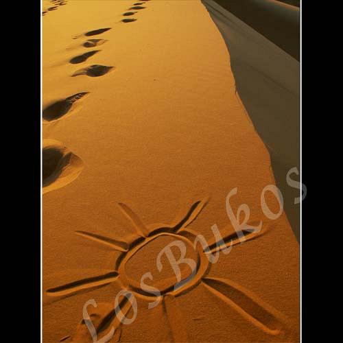 Slunce na poušti