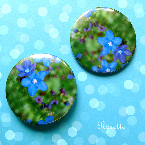 Modré drahokamy ... - magnet / placka
