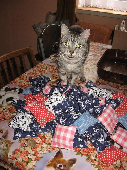 Šantové pytlíčky pro vaše kočičky :-)))))