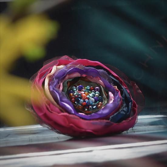 Květinová Brož Rebeka