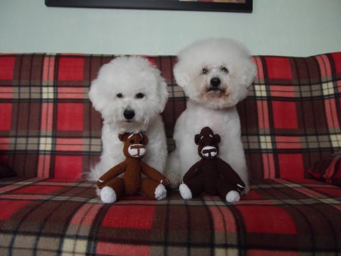 Noví spokojení majitelé medvídků :-)